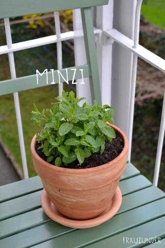 Minzi