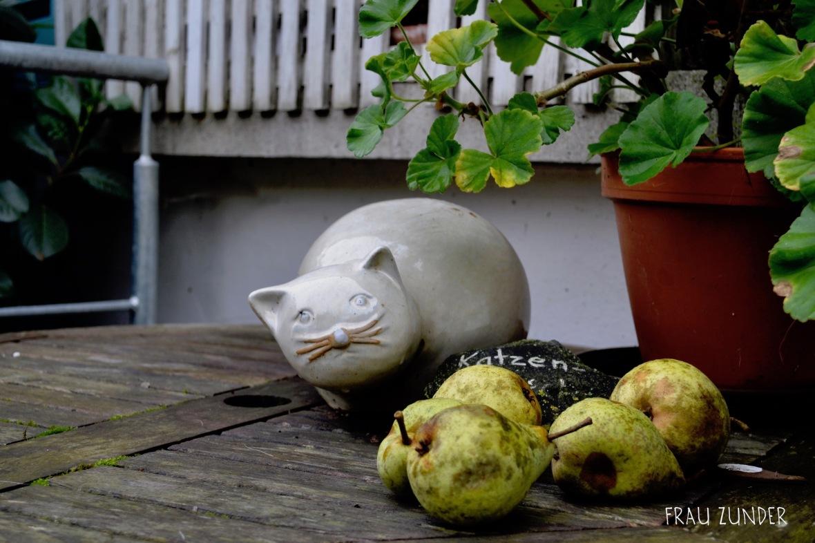 Katze und Birnen auf einem Tisch, Bad Mergentheim