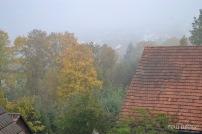 Bäume mit Herbstlaub und Ziegeldach im Nebel, Bad Mergentheim